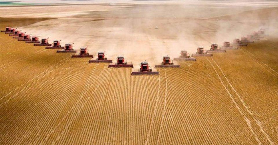 Fazenda-bicampeã-em-produtividade-de-soja-discute-inovação-e-tecnologias-com-tour-no-campo-e-palestras-técnicas-no-dia-29-696x396
